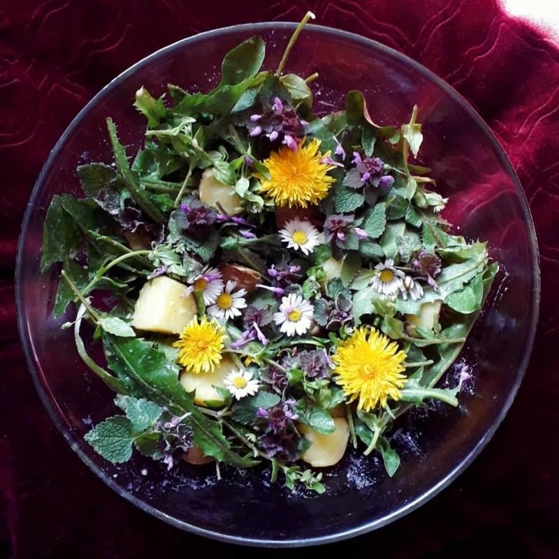 Wildpflanzen-Kartoffelsalat