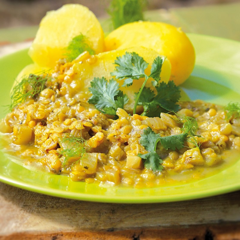 Fenchel-Linsen-Curry